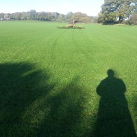 turfing services