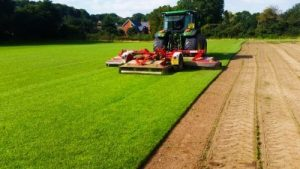 Turf Suppliers Hampshire