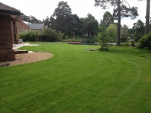Topsoil Suppliers in Hampshire